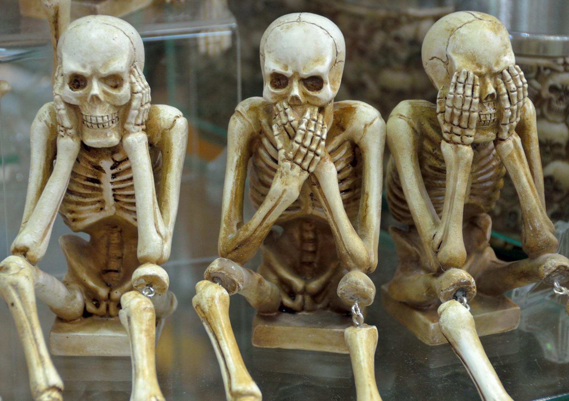 skeletons-1432216712dg2